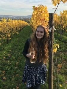 vineyard_me